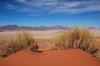 Speciale deserto del Namib